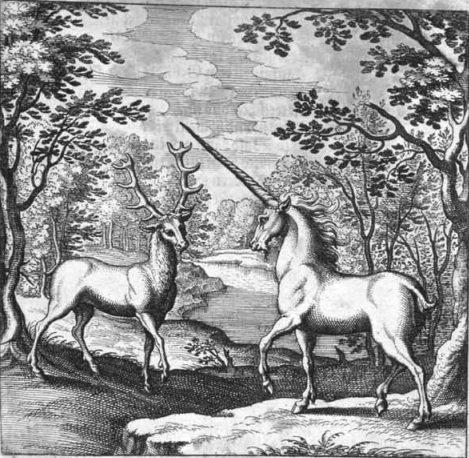 DeerUnicorn