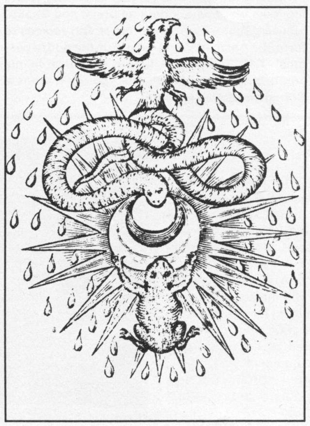 From Theatrum Chemicum Britannicum by Elias Ashmole. (London, 1652). (Photo by Oxford Science Archive/Print Collector/Getty Images), image via http://www.gettyimages.ch/detail/nachrichtenfoto/alchemical-symbolism-1652-a-toad-and-serpent-nachrichtenfoto/463916645?Language=de