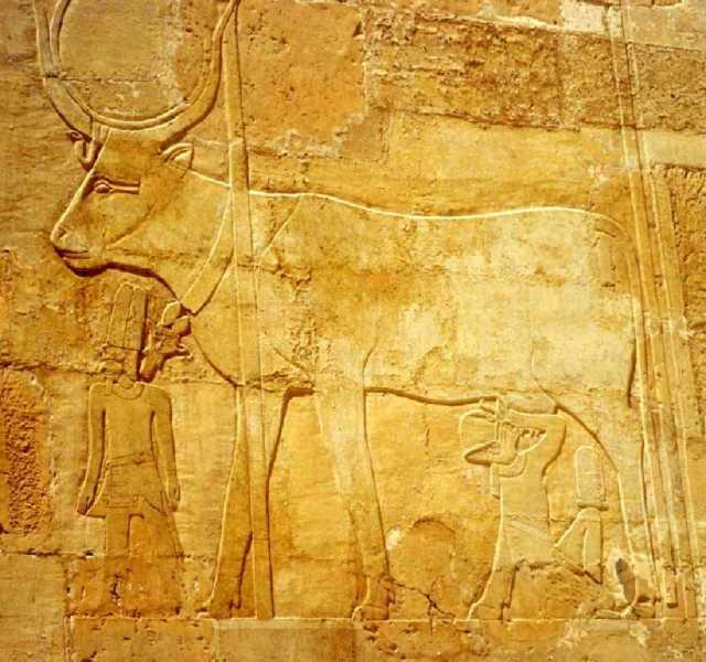The nursing cow goddess