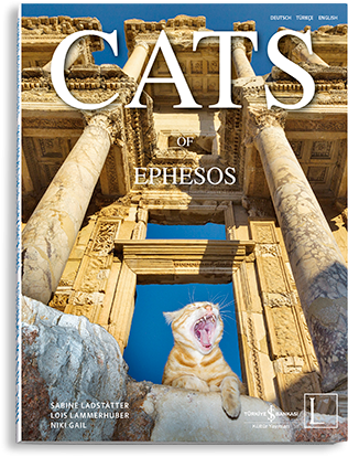cats_of_ephesos_cover1380714390.6903